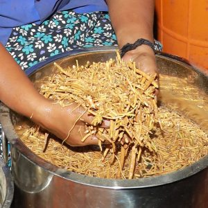 The Best Ashwagandha roots are handpicked and washed for any impurities